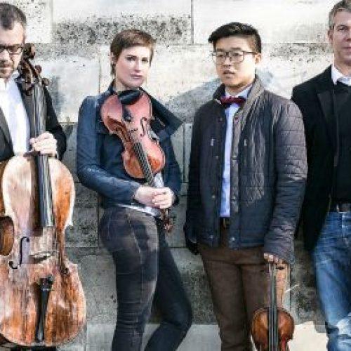 Quatuor diotima1 Verena Chen